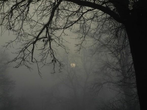 Fernsehinterview auf W24 zum Thema Herbst-Winterdepression