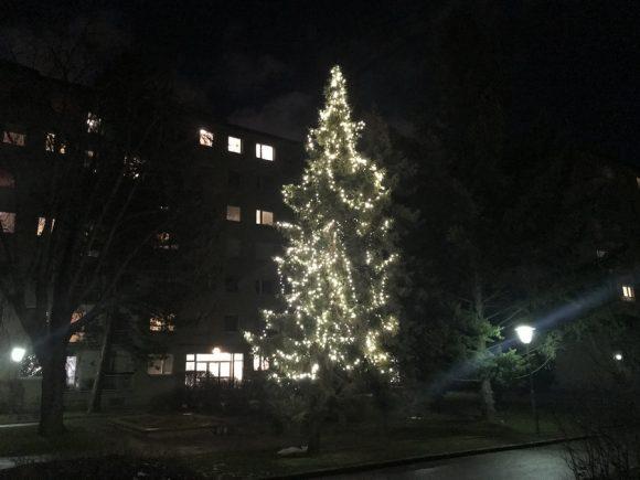 Weihnachten im Ursulinenhof